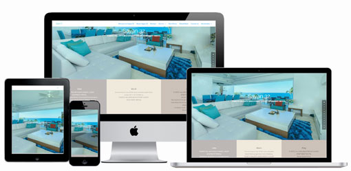 Incentive Plan it website design